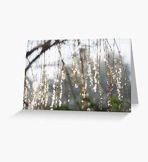 Sparkling ice crystals on weeping willow Greeting Card
