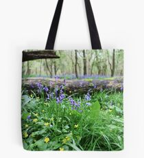 Bluebell wood in Cambridgeshire, England Tote Bag