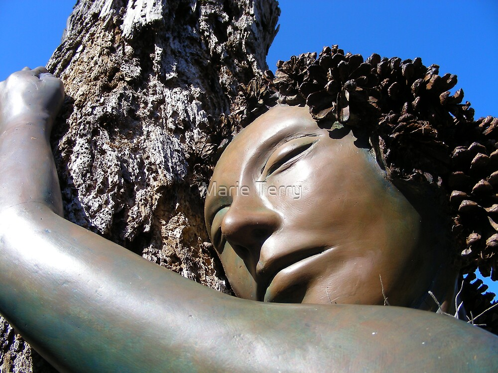 Pine Cone Lady Contentment by Marie Terry