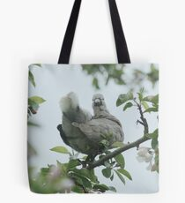 Baby collar dove in apple blossom Tote Bag