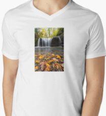 Fall Maple Leaves at Hidden Falls Men's V-Neck T-Shirt