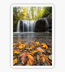 Fall Maple Leaves at Hidden Falls Sticker