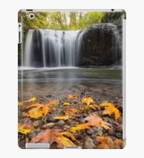 Fall Maple Leaves at Hidden Falls iPad Case/Skin