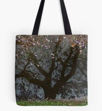 Grafton - after - the - rain Tote Bag