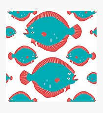 Fish Cartoon - Sea Creatures Photographic Print