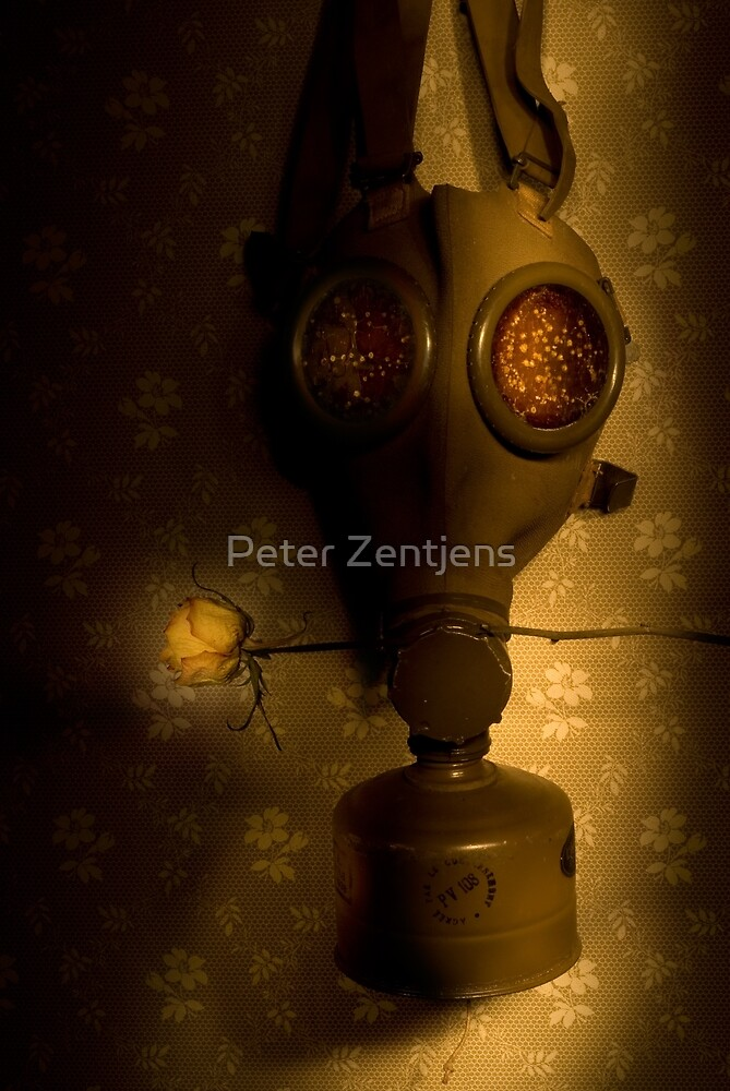 After the War by Peter Zentjens