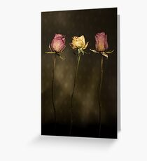 3 Roses Greeting Card