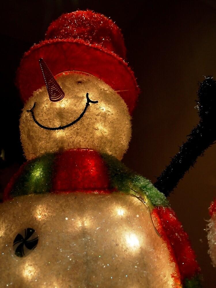 The Snowman by Douglas E.  Welch