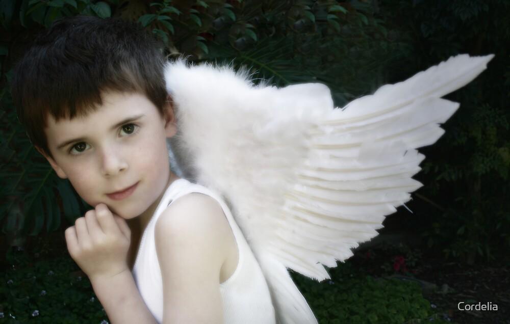 Cheeky Angel by Cordelia