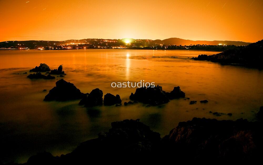 Point Lobos by oastudios