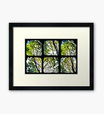 Look Through My Window Framed Print