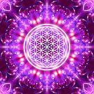 Flower of Life - Transformation von Gaby Shayana Hoffmann