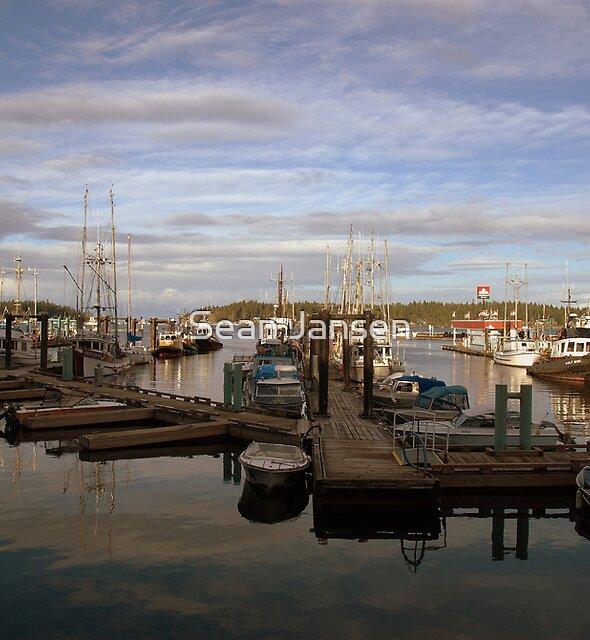 Pacific Harbour by Sean Jansen