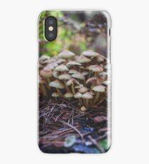 Woodland fairy mushrooms in Thetford forest, England iPhone Case