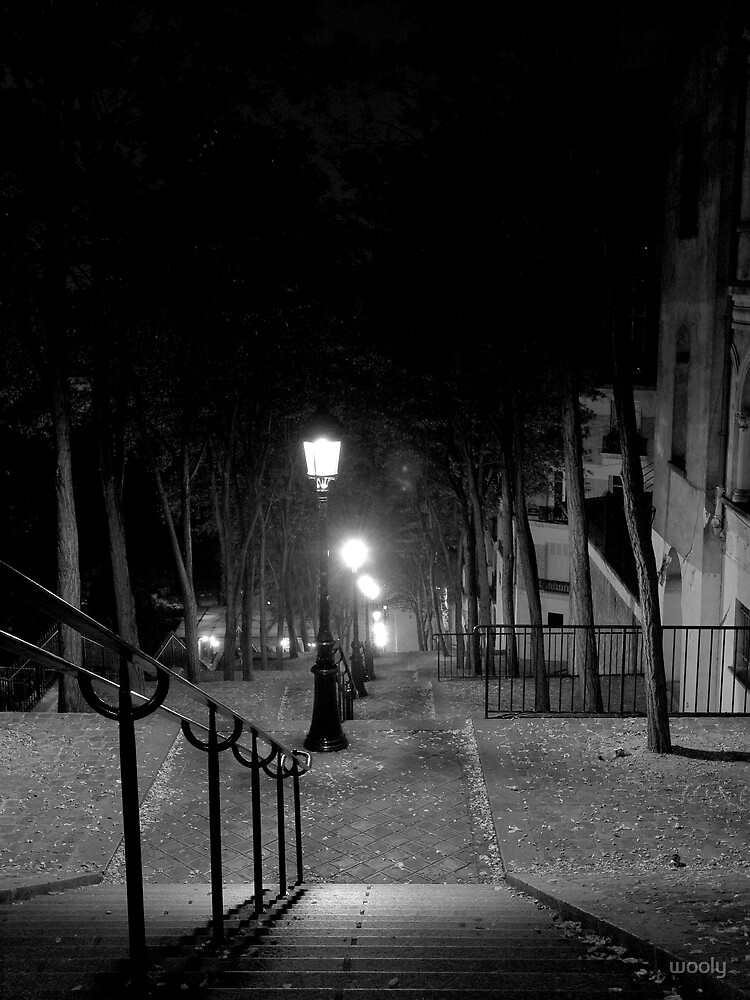 Steps in Montmartre by wooly
