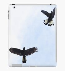 Yellow Tailed Black Cockatoos, Eden Hills iPad Case/Skin