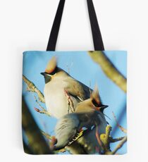 Waxwings on rowan tree - Cambridgeshire, England Tote Bag