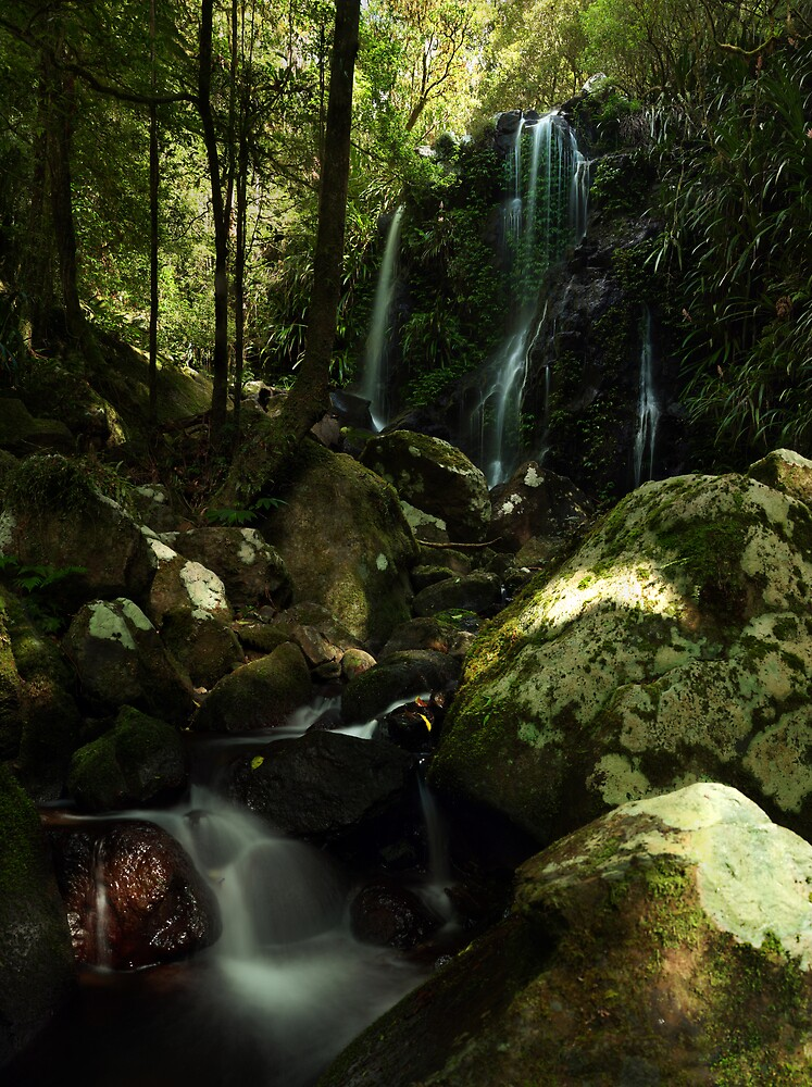 Chalahn Falls, Green Mountains section, Lamington National Park, Queensland by David James