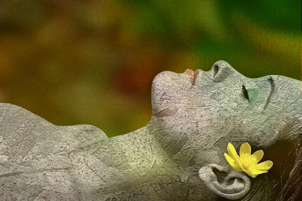 Fall Asleep by Tom Romeo