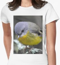 Eastern Yellow Robin - Focused Women's Fitted T-Shirt