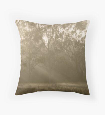 Sunbeams through the fog Throw Pillow