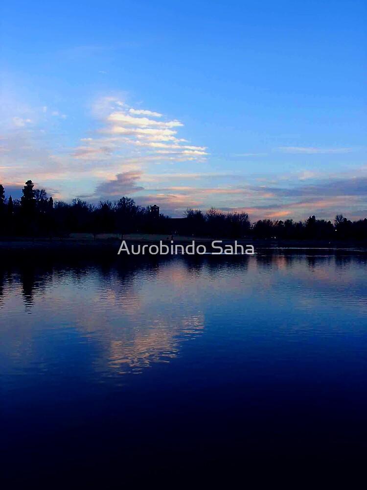 Lake by Aurobindo Saha