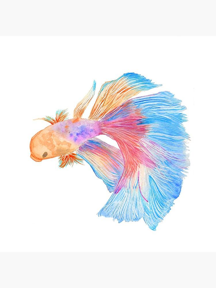 Watercolor beta fish by thevintagenib