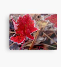 There Will Always Be Spring  Metal Print