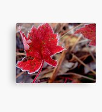 There Will Always Be Spring  Canvas Print