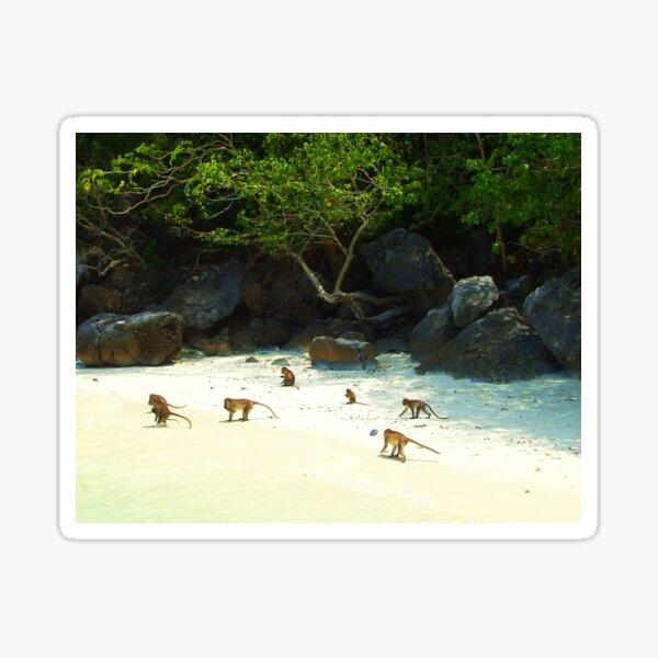 Monkey Beach Sticker