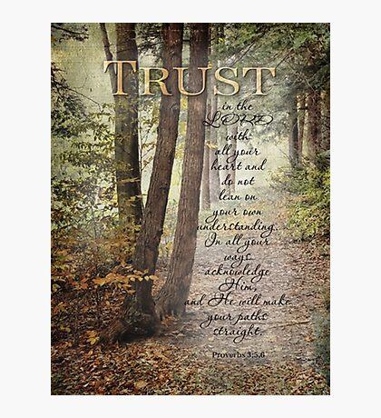 Trust-Prov. 3:5,6- Biblical Photographic Print