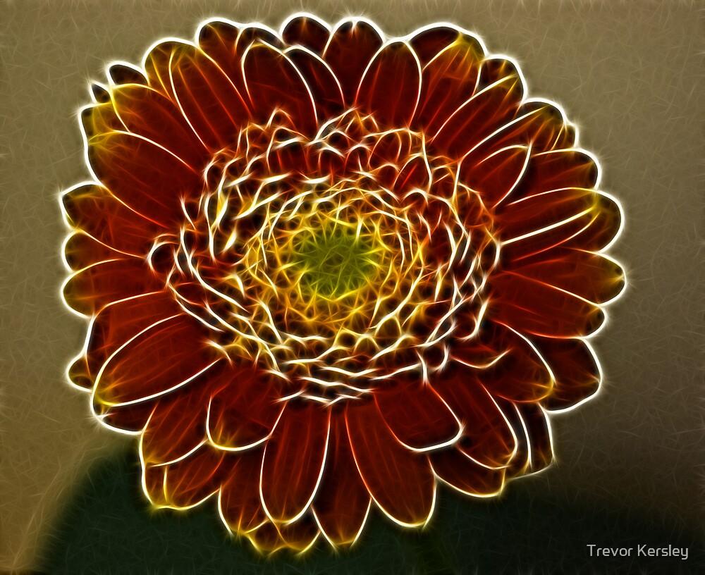 Flower by Trevor Kersley