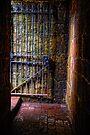 Im Free by Simon Duckworth