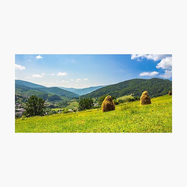haystacks on hillside near the village Photographic Print