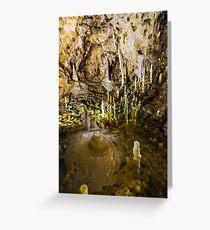 Ursus spelaeus cave in romanian mountains transilvania Greeting Card