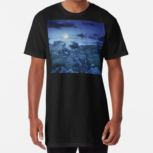 boulders on the mountain meadow with dandelions at night Long T-Shirt