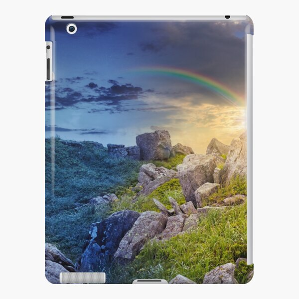 boulders on the mountain meadow with dandelions 24 hour collage iPad Snap Case