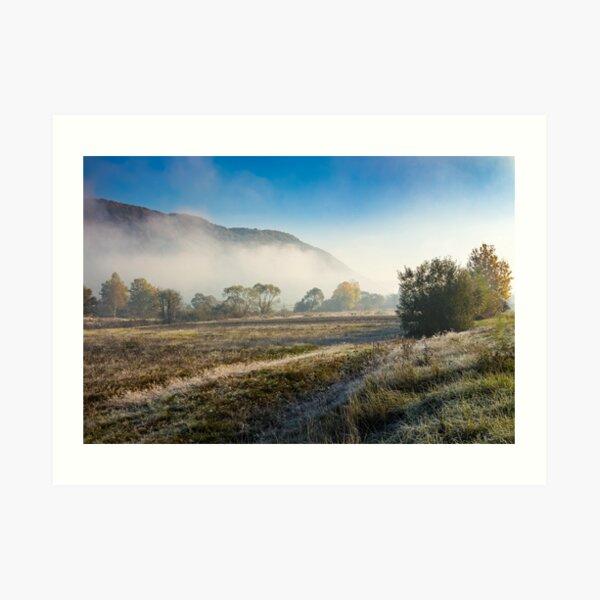 morning fog among trees Art Print