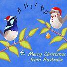 Australian Cute Blue Wren Christmas Carols  by JumpingKangaroo