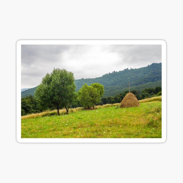 haystack near trees on hillside meadow  in mountains Sticker