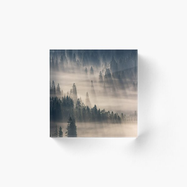 coniferous forest in foggy mountains Acrylic Block