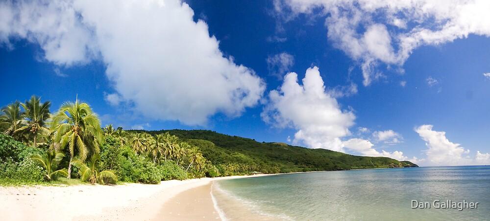 Deserted Beach, Fiji. by Dan Gallagher