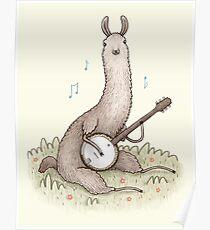Banjo Llama Poster