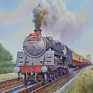 BR Standard 4-6-0 on the Master Cutler on the troughs. by Mike Jeffries