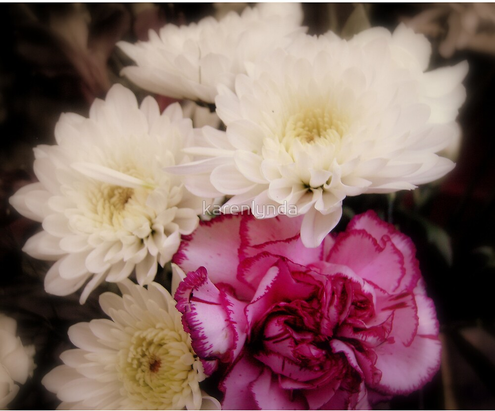 Pink and White by karenlynda