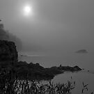 Morning River... by Benjamin Young