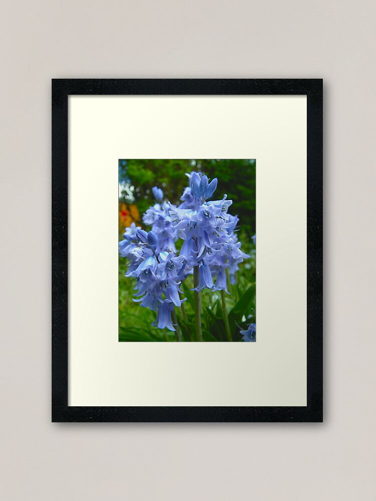 Alternate view of Blue is the colour... again! Framed Art Print
