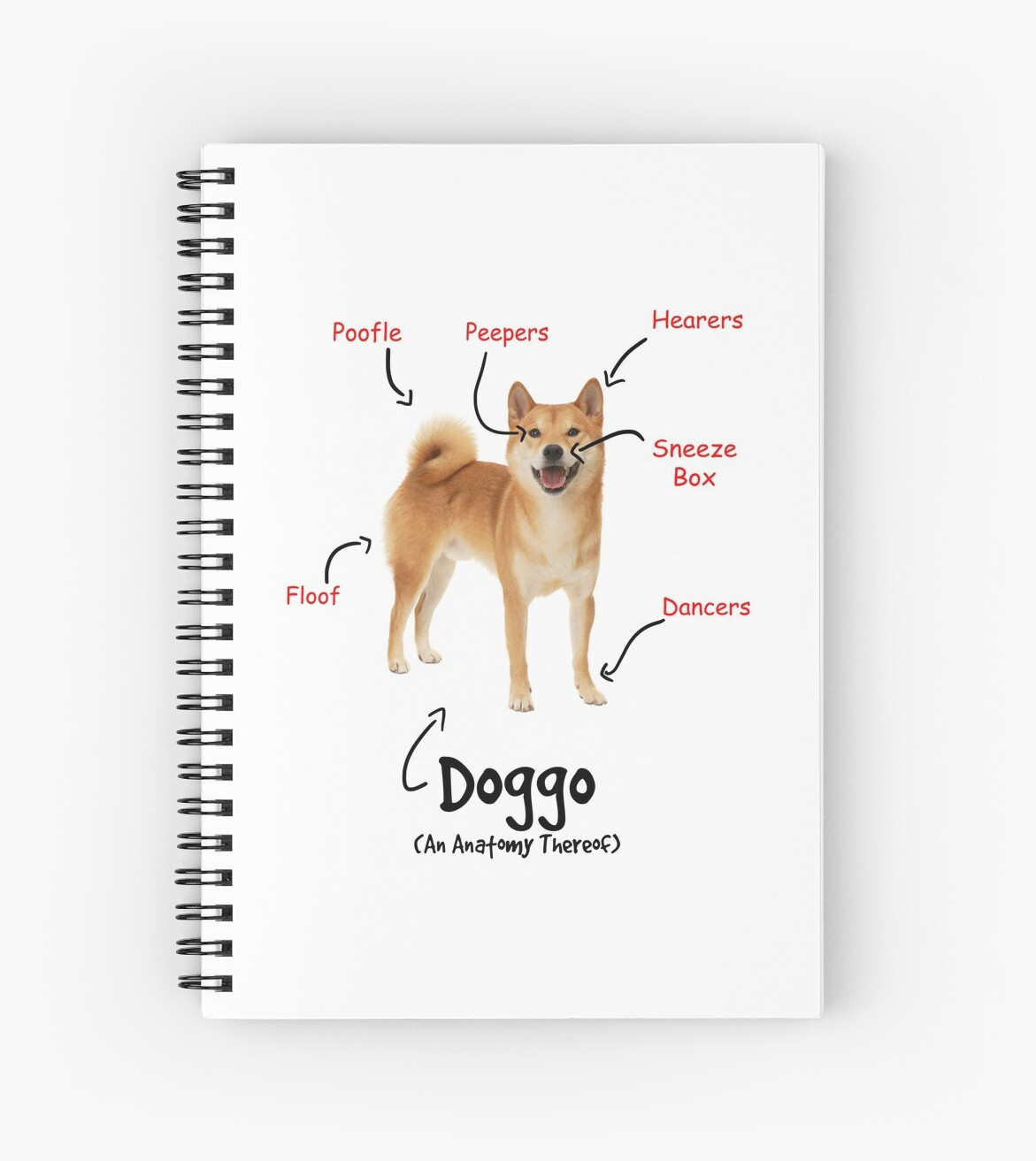 doggo anatomy\