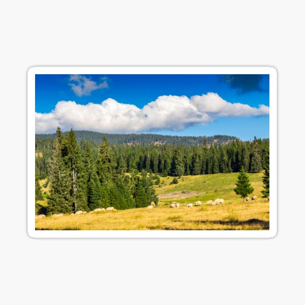 flock of sheep on the meadow near  forest in mountains Sticker
