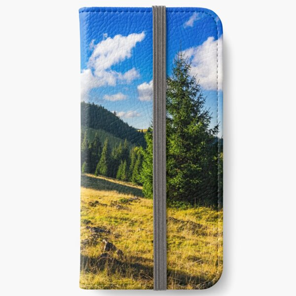 conifer forest  in mountains at sunrise iPhone Wallet
